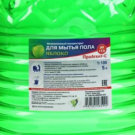 """Низкопенный концентрат для мытья пола 1:100 """"Яблоко"""" 5л - фото 4665776"""