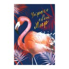 """Notepad A6, 24 sheets on the clip Calligrata """"Flamingo 2"""", cardboard cover"""