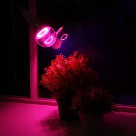 Светодиодная лампа для растений ( фитолампа ) Luazon 12 Вт, E27, 220В