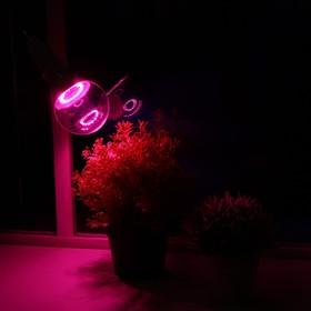 Светодиодная лампа для растений ( фитолампа ) Luazon 15 Вт, E27, 220В