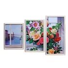 """Модульная картина """"Цветы на окне"""" 23х32,23х40,х23х49, 50х70 см"""