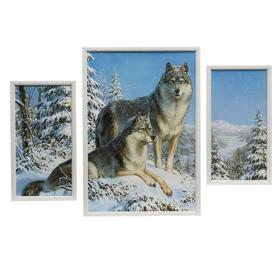 "Модульная картина ""Волки"" 18х35 (2), 34х50, 50х70 см"