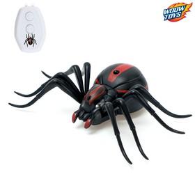 Паук радиоуправляемый «Черная вдова», работает от батареек