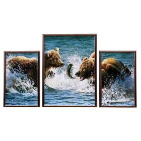 "Модульная картина ""Медвежьи игры"" 28х45(2), 43х59 см"