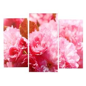 "Картина модульная на подрамнике  ""Пионы розовые"" (2-25х50, 30х60см)  80х60см"