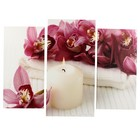 "Картина модульная на подрамнике ""Орхидеи со свечой"" (2-25х50, 30х60см) 80х60см"
