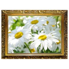 Алмазная мозаика «Ромашки» 29,5×20,5 см, 25 цветов