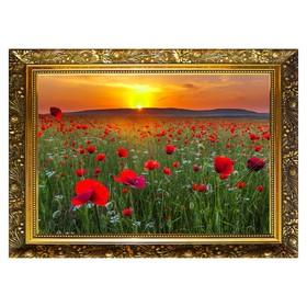 Алмазная мозаика «Маковое поле» 29,5×20,5 см, 25 цветов