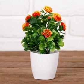 """Bonsai pot """"Fluffy flowers"""" 6*15 cm, mix"""