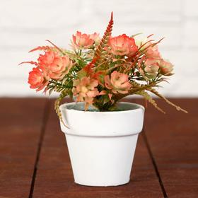 """Bonsai pot """"Flowers with fern leaves"""" 7*11cm, mixed"""