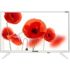 "Телевизор Telefunken TF-LED24S75T2, 24"", 1366x768, 1xHDMI, 1xUSB, белый"