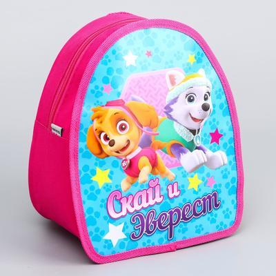 "Backpack, kids Paw Patrol ""Skye and Everest"" R-R. 21*25"