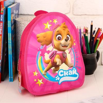 """Backpack, kids Paw Patrol """"Skye"""" p-R. 21*25"""