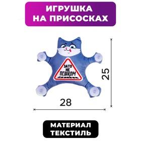 """Avtokraska on suckers """"But not on foot"""", cat"""