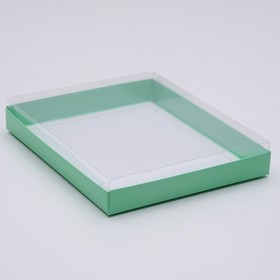 A cardboard box 260*210*30 with transparent lid, cellulose, mint