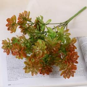 """Bouquet """"Leaves"""" 25 cm, mix"""