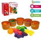Набор для сортировки «Разноцветный урожай»