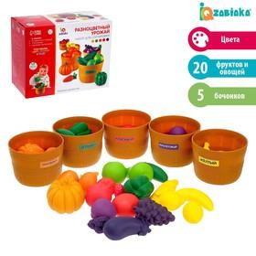 Набор для сортировки «Разноцветный урожай», по методике Монтессори