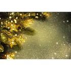 Фотобаннер, 300 × 200 см, с фотопечатью, «Светящиеся звёзды»