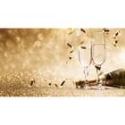 Фотобаннер, 300 × 200 см, с фотопечатью, «Брызги шампанского»