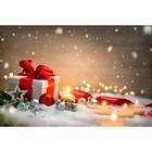 Фотобаннер, 300 × 200 см, с фотопечатью, «Новогодний подарок»