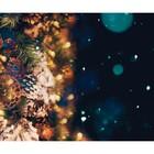 Фотобаннер, 250 × 200 см, с фотопечатью, «Шишки»