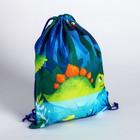 "Bag for plavania ""Dinosaur"", 39 x 30.5 cm"