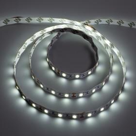 Светодиодная лента Ecola, 12В, SMD5050, 3 м, IP20, 14.4Вт/м, 60 LED/м, 6000К