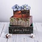 Набор деревянных ящиков 3 в 1  без ручки «Новогоднее настроение» - фото 833787