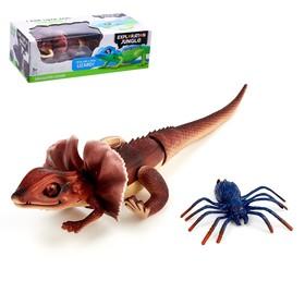 Набор животных «Ящерица против паука», работает от батареек