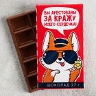 Шоколад «Вы арестованы», 27 г