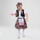 Карнавальный костюм «Бабка-Ёжка», жилет, юбка, блузка, нос, платок, р. 30, рост 110-116 см
