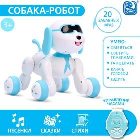 Робот-игрушка радиоуправляемый Собака Charlie, световые и звуковые эффекты, русская озвучка Ош