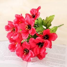 """Bouquet """"Amsonia"""" 28 cm, mix"""