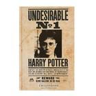 Ежедневник недатированный А5, 80 листов «Гарри Поттер. Нежелательное лицо №1», твёрдая обложка, блок офсет