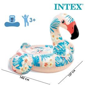 Плот для плавания «Фламинго тропический», 142 х 137 х 97 см, 57559NP INTEX