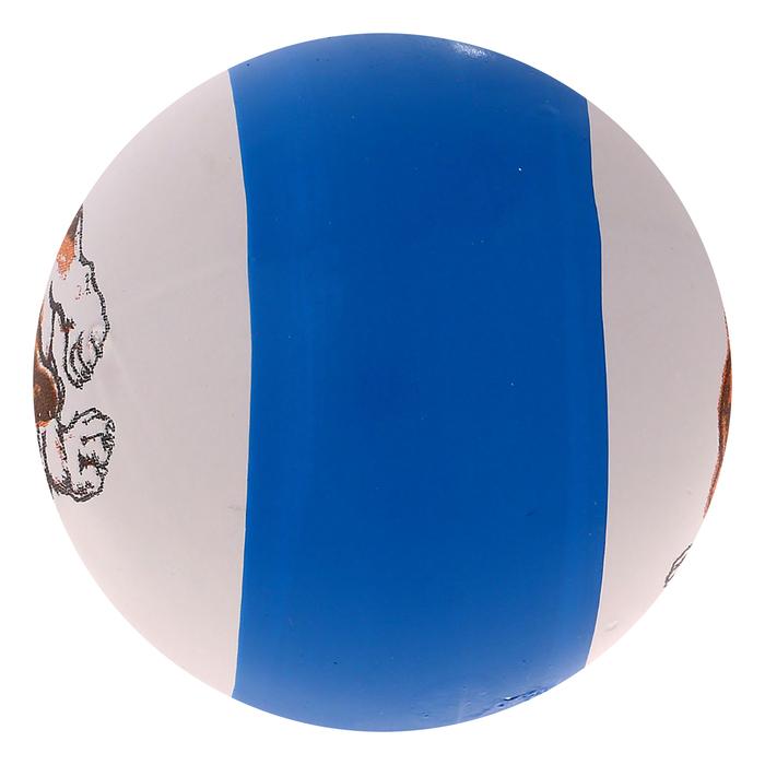 Мяч с рисунком, цвета МИКС
