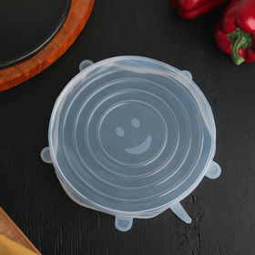 "Universal lid for food storage ""Bug"" 20 cm"