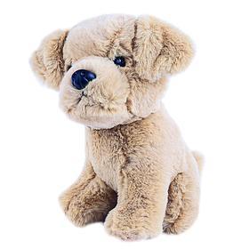 Мягкая игрушка «Собачка Лабрадор», 20 см
