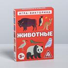 Игра-викторина «Животные» 5+, 50 карточек - фото 105602178