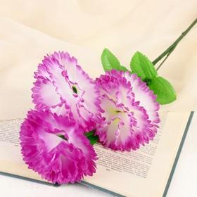 Цветы искусственные 'Гвоздика трио' 11*58 см, бело-сиреневый Ош