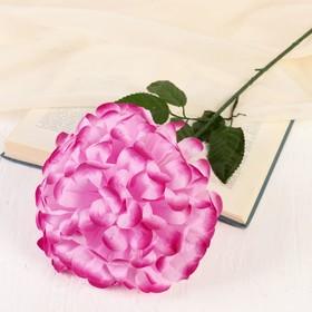 Цветы искусственные 'Герань королевская', 16*60 см, малиновый Ош