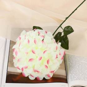 Цветы искусственные 'Герань королевская', 16*60 см, бело-розовый Ош
