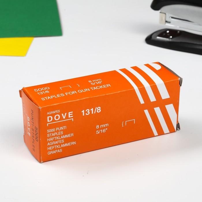 "Скобы для степлера набор 5000 8 мм 5/16"" 4,8х12х3,6 см - фото 726573688"