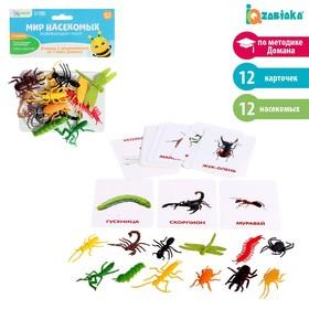 Развивающий набор с карточками «Мир насекомых», по методике Домана