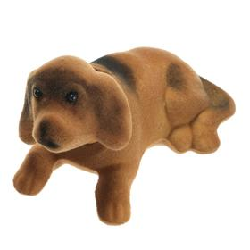 Собака на панель авто, качающая головой, малая, бежево-коричневый окрас в Донецке