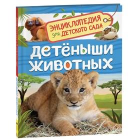 Энциклопедия для детского сада «Детёныши животных». Клюшник Л. В.