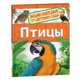 Энциклопедия для детского сада «Птицы», Гальцева С. Н.