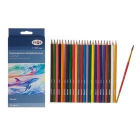 Карандаши цветные акварельные 24 цвета, «Гамма» «Лицей», с кистью, шестигранные