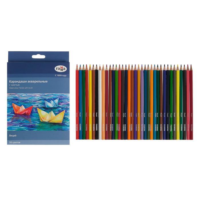 Карандаши цветные акварельные «Гамма», «Лицей», 36 цветов, с кистью, шестигранные, к/к